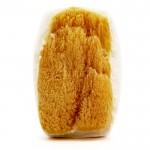 soap-bar-natural-sea-sponge-nalu-koa-authentic-hawaiian-bath-body-products2